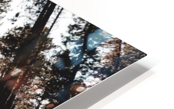 20190802_182121 HD Sublimation Metal print