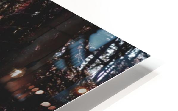 20190802_182317 HD Sublimation Metal print