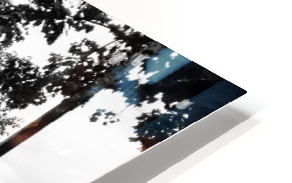 KA8_6753 HD Sublimation Metal print