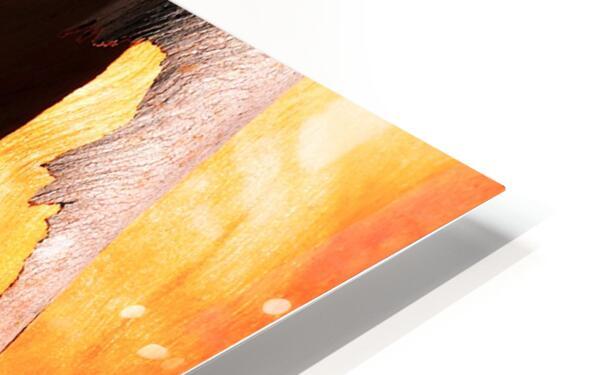 Salmon Bark Peeling HD Sublimation Metal print