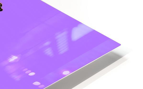 Laughing Galah - Purple HD Sublimation Metal print