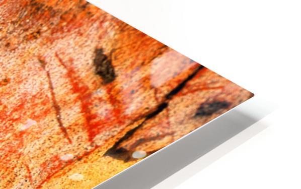 Eucalyptus Bark And Patterns HD Sublimation Metal print