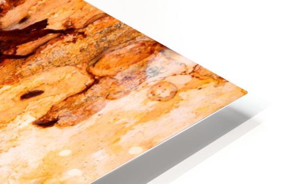 Ghost Gum Bark - 4 HD Sublimation Metal print
