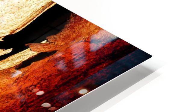Murray Gum Tree Bark 3 HD Sublimation Metal print