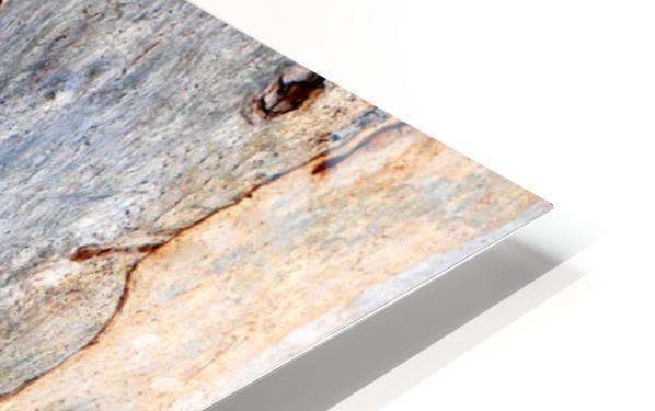 Murray Gum Tree Bark 5 HD Sublimation Metal print