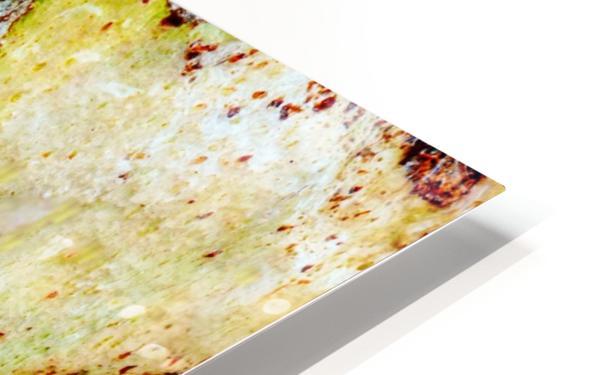 Aussie Gum Tree Bark - 9 HD Sublimation Metal print