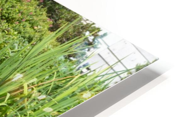 IMGP4925 HD Sublimation Metal print