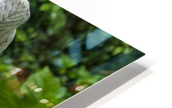IMGP4937 HD Sublimation Metal print