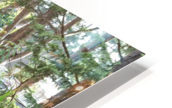 IMGP4934 HD Sublimation Metal print
