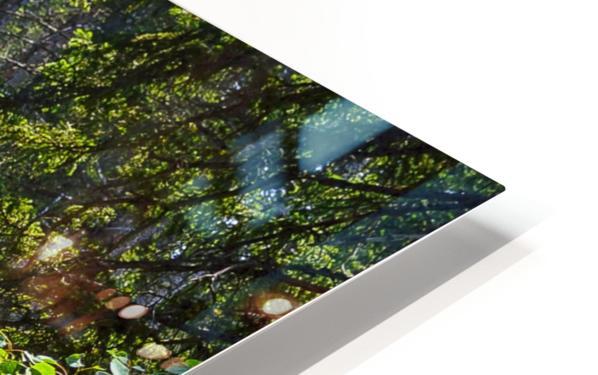 Fairy Creek HD Sublimation Metal print