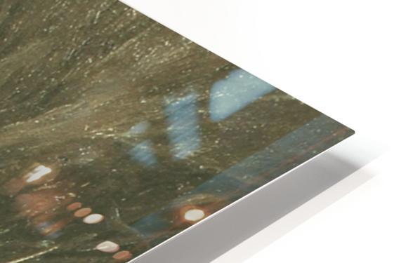 Nymphe dans les roseaux HD Sublimation Metal print
