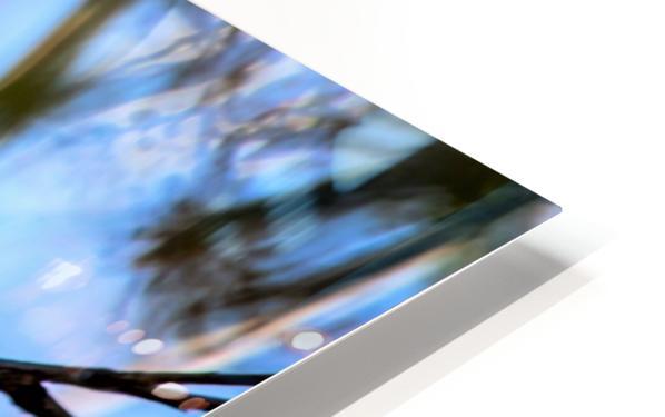 Serenity HD Sublimation Metal print