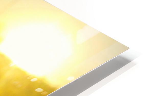 IMG_20180709_124524_133 Impression de sublimation métal HD