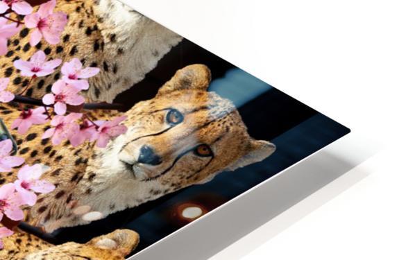 BAD KITTY - Impression de sublimation métal HD