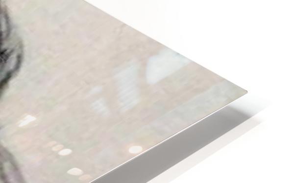 IMG_20191009_122215 HD Sublimation Metal print