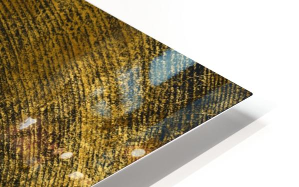 gold texture freekjhkg HD Sublimation Metal print
