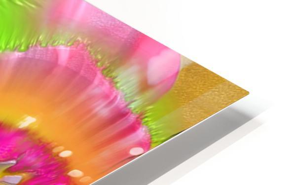 41 HD Sublimation Metal print