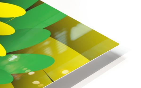 Digital Forest HD Sublimation Metal print