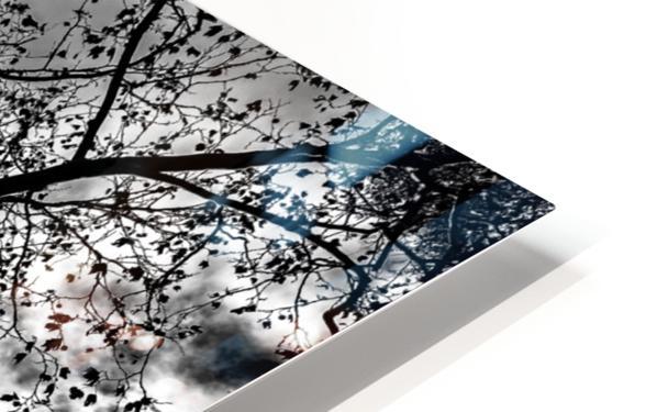 _1150920_1572477007.8786 HD Sublimation Metal print