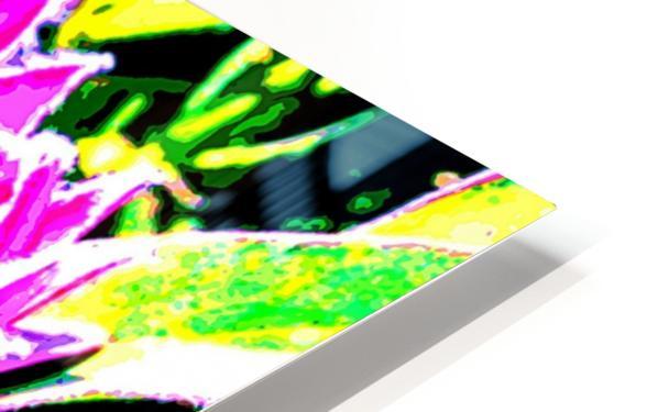 pink protea HD Sublimation Metal print