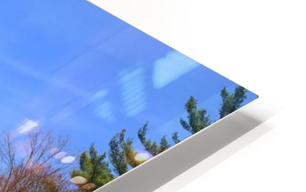 Simsbury Wetland HD Sublimation Metal print