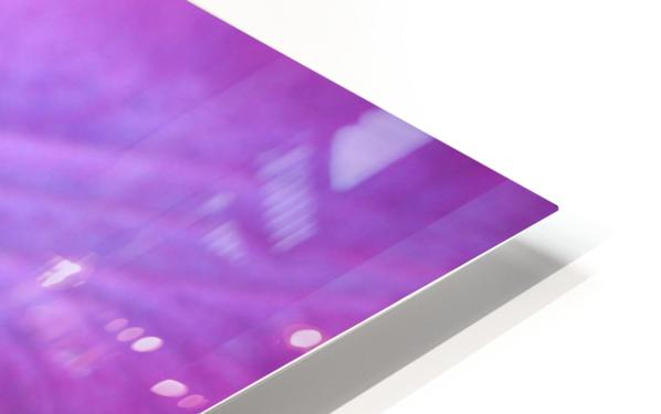 Purple Clematis HD Sublimation Metal print