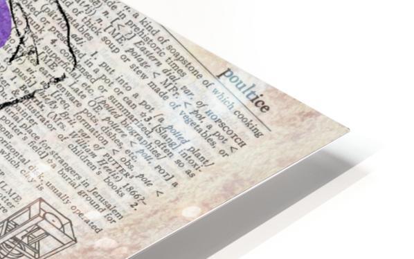 Potential Energy Chakras Colors HD Sublimation Metal print