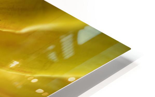 Jaune 2 HD Sublimation Metal print
