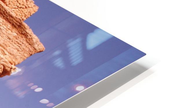 Palmyra HD Sublimation Metal print