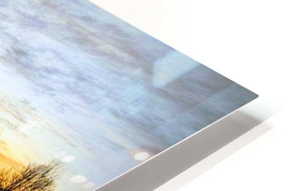Frosted Ice at Dawn HD Sublimation Metal print