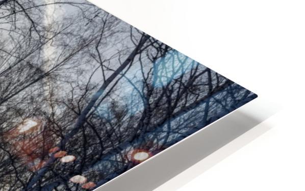 DSC_0351 10    1 HD Sublimation Metal print