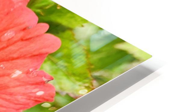 Raindrops HD Sublimation Metal print