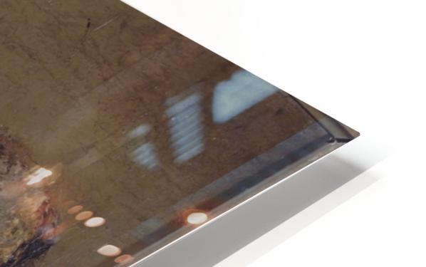 L ane HD Sublimation Metal print