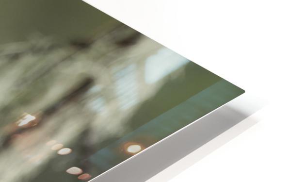 Great Grey Owl - Eye to Eye HD Sublimation Metal print