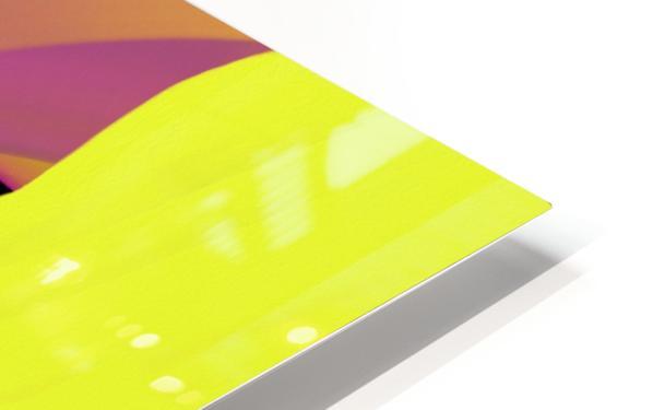 0168 HD Sublimation Metal print