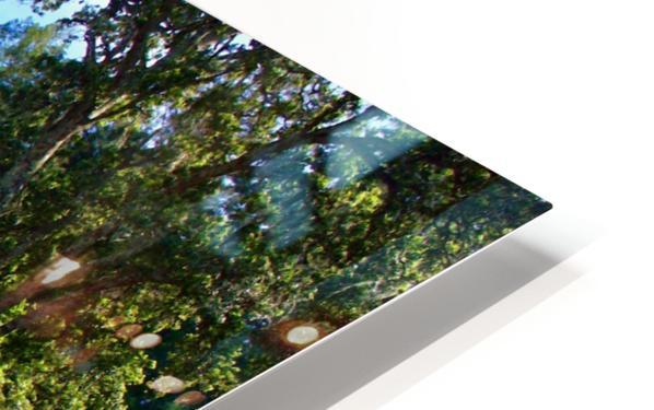 IMG_8112 HD Sublimation Metal print