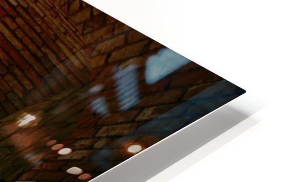 IMG_8147 HD Sublimation Metal print