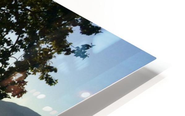Tree HD Sublimation Metal print