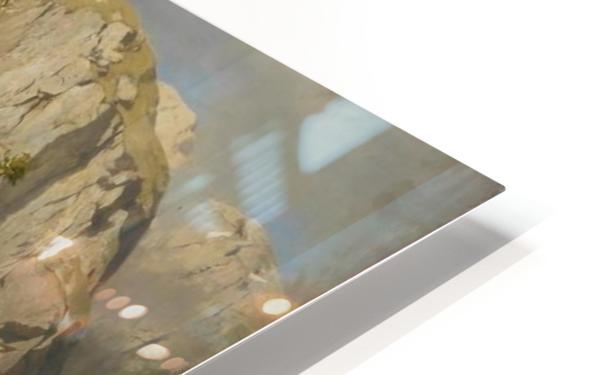 Eine Almwirtschaft HD Sublimation Metal print