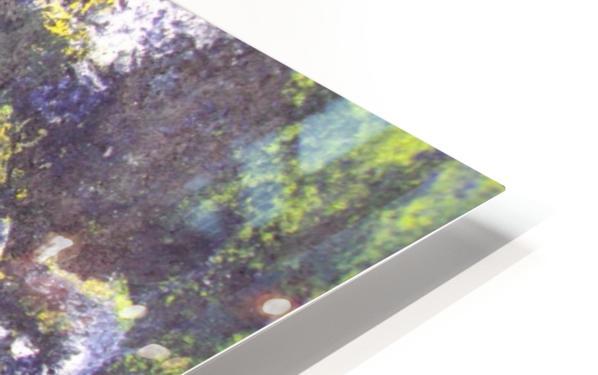 Disbonded HD Sublimation Metal print
