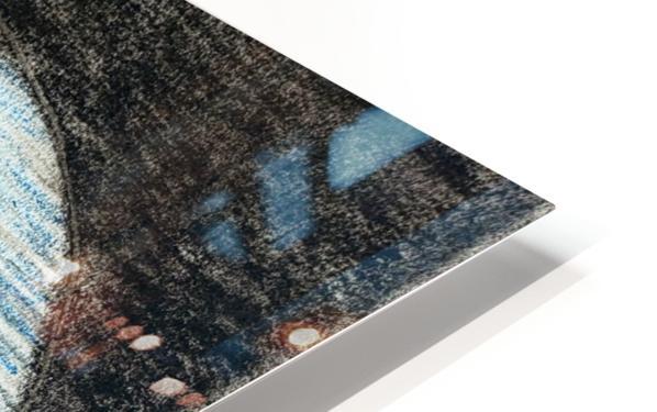 20200331_104219 HD Sublimation Metal print