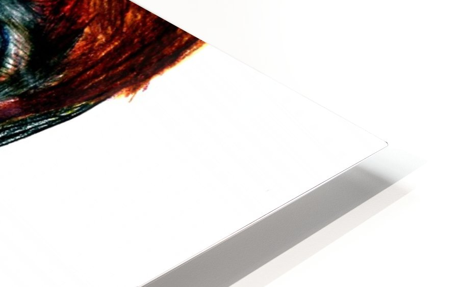 interchangingversionthree HD Sublimation Metal print