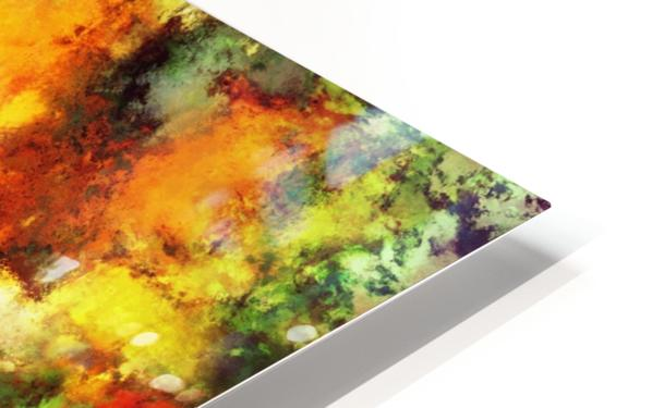 Combustible HD Sublimation Metal print