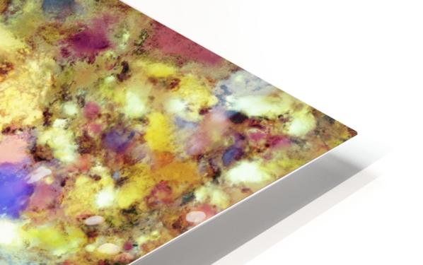 Discarded blooms HD Sublimation Metal print