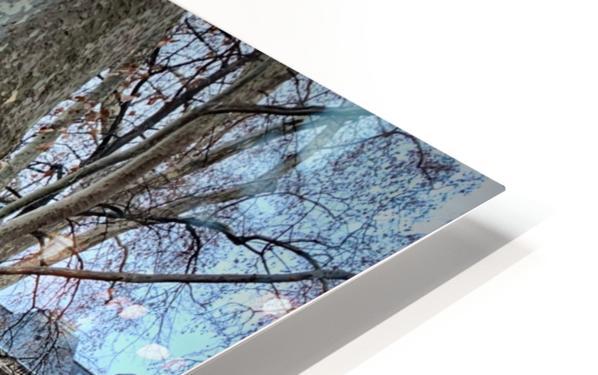 Chaises du Luxembourg   7 HD Sublimation Metal print