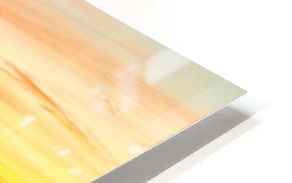 Energized HD Sublimation Metal print