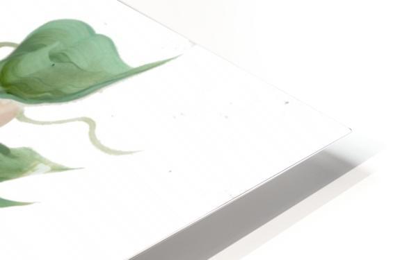 hydrangea HD Sublimation Metal print