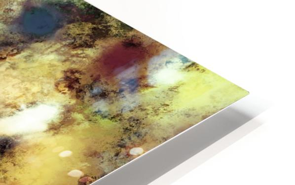 River bed HD Sublimation Metal print