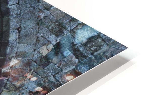 DSC_7647 HD Sublimation Metal print