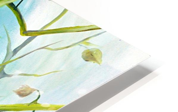 Realm of Greenery Foliage HD Sublimation Metal print